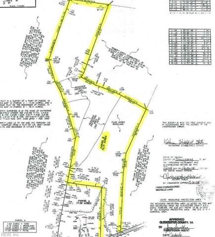 75+ac Pampa Rd, Gloucester County, VA 23061 (#10288849) :: Austin James Realty LLC