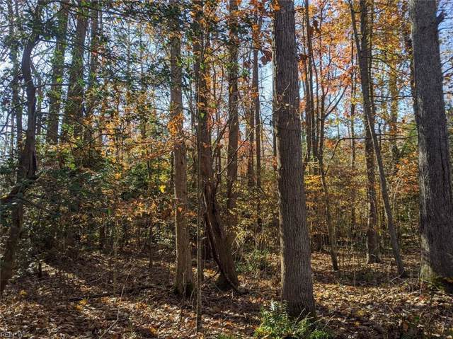 Lt 57 Spring Branch Dr, Gloucester County, VA 23128 (#10292200) :: Austin James Realty LLC