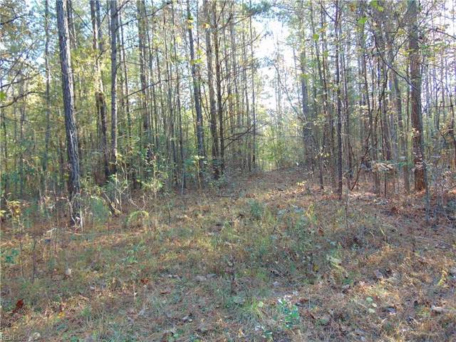 92.8ac Lebanon Rd, Surry County, VA 23881 (MLS #10292770) :: Chantel Ray Real Estate