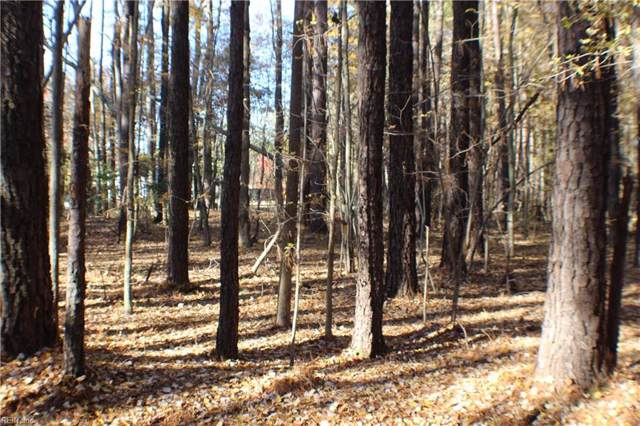 21469 Bailey Dr, Isle of Wight County, VA 23314 (#10293049) :: RE/MAX Central Realty
