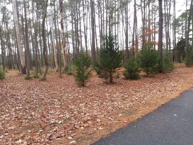 81 Finns Point Ln, Hampton, VA 23669 (MLS #10294919) :: Chantel Ray Real Estate