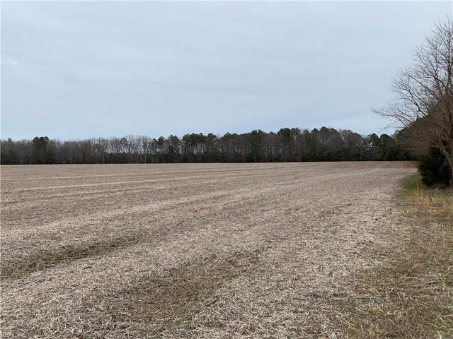 54+AC St. Route 607  Fletcher Rd, Gloucester County, VA 23061 (#10296109) :: Austin James Realty LLC