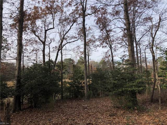110 Carters Creek Ln, Isle of Wight County, VA 23314 (MLS #10300825) :: Chantel Ray Real Estate