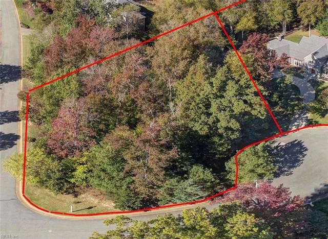 3021 River Oaks Rd, James City County, VA 23185 (MLS #10301894) :: Chantel Ray Real Estate