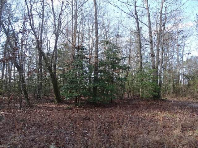 .83 Ac Edgar Ln, Surry County, VA 23883 (#10303780) :: RE/MAX Central Realty