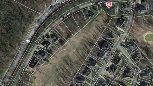 196 Blackheath, James City County, VA 23188 (#10304490) :: Encompass Real Estate Solutions
