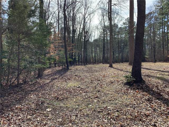 14051 Captains Point Ln, Isle of Wight County, VA 23430 (#10305413) :: RE/MAX Central Realty