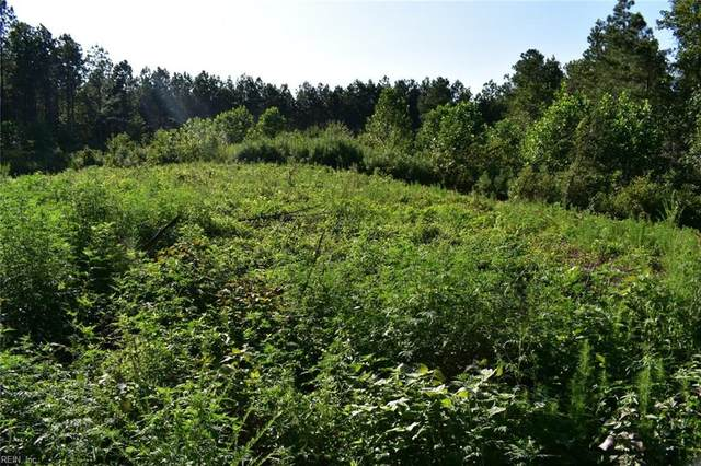 37 Ac Mckenney Hwy, Dinwiddie County, VA 23872 (#10306397) :: Austin James Realty LLC