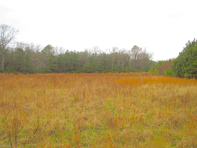 13 Ac Pleasant Cove Dr, Northampton County, VA 23350 (#10307994) :: Abbitt Realty Co.