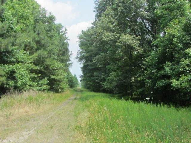 52ac Logan Off Nansemond Pkwy Rd, Suffolk, VA 23434 (#10309761) :: Atkinson Realty