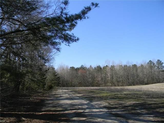 68+ Ac Glebe Hall Rd, Gloucester County, VA 23061 (MLS #10311064) :: Chantel Ray Real Estate
