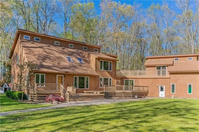715 Paula Dr, Chesapeake, VA 23322 (#10312630) :: The Kris Weaver Real Estate Team