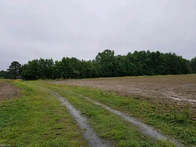 75+ac Turlington Rd, Suffolk, VA 23434 (#10325747) :: Abbitt Realty Co.
