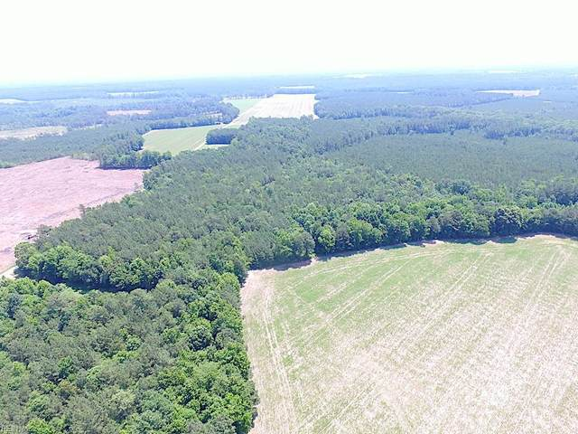 16 Ac Kellos Mill Rd, Southampton County, VA 23866 (#10326413) :: Community Partner Group