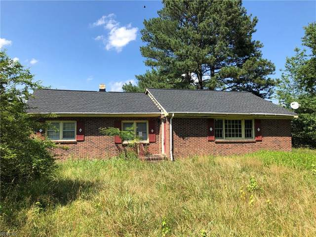 4191 Colonial Trl E, Surry County, VA 23883 (#10330906) :: Rocket Real Estate