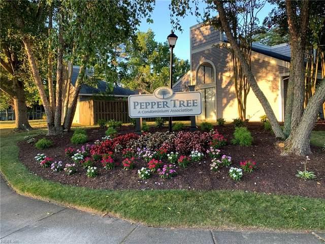 1024 Autumn Woods Ln #110, Virginia Beach, VA 23454 (#10334764) :: Encompass Real Estate Solutions