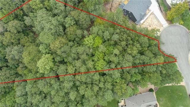 .99 Ac Rock Wren Dr, New Kent County, VA 23140 (#10337591) :: Avalon Real Estate