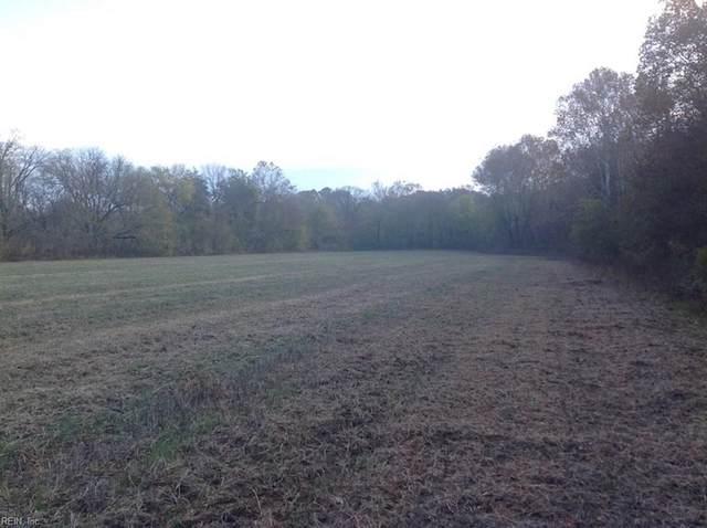 36 Ac Hardings Mill Rd, Halifax County, VA 24577 (#10341838) :: Abbitt Realty Co.