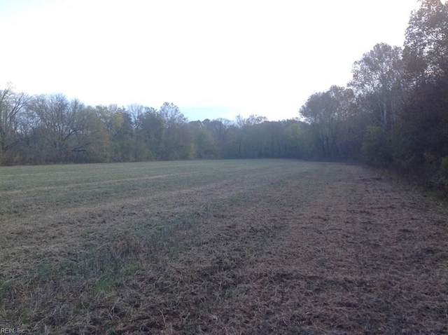36 Ac Hardings Mill Rd, Halifax County, VA 24577 (#10341838) :: Austin James Realty LLC