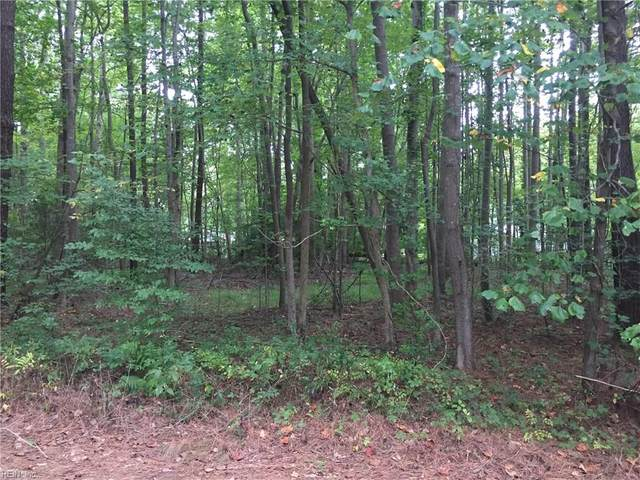 Lot 44 Deodara Dr, Middlesex County, VA 23071 (#10346435) :: Berkshire Hathaway HomeServices Towne Realty