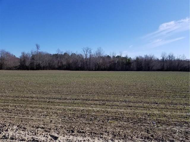 Lot 1 Old Branchvill Rd, Southampton County, VA 23828 (#10347099) :: The Bell Tower Real Estate Team
