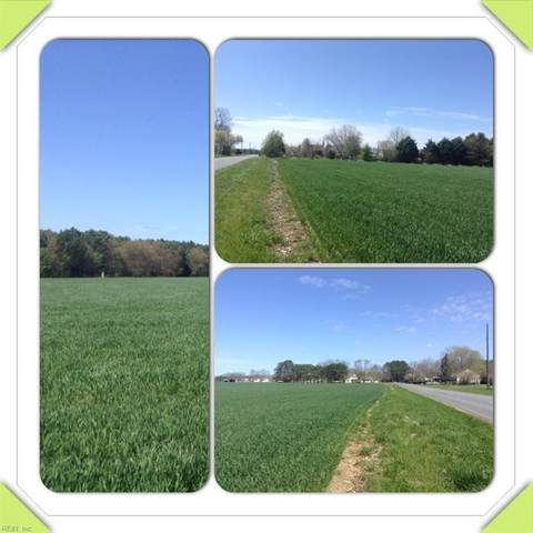 Lot 21 Peaceful Lakes Dr, Northampton County, VA 23398 (#10348832) :: Judy Reed Realty