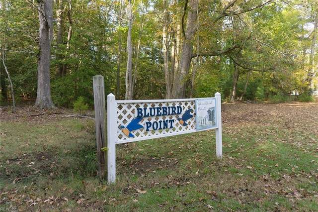 4ac Bluebird Pt, Mathews County, VA 23138 (#10348899) :: Berkshire Hathaway HomeServices Towne Realty