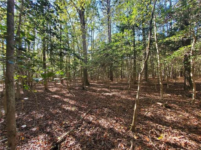 1.58AC N Cherry Grove Rd, Suffolk, VA 23432 (#10349804) :: Verian Realty
