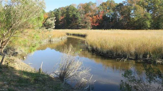 1 Acre Borden Rd, Gloucester County, VA 23072 (#10350766) :: Gold Team VA