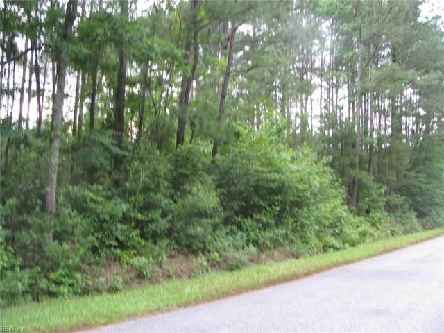 12+ Ac Airport Rd, Suffolk, VA 23434 (#10350921) :: Abbitt Realty Co.