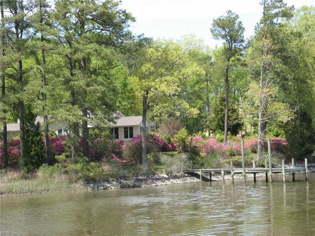 20240 Paleo Point Ln, Isle of Wight County, VA 23430 (#10353876) :: RE/MAX Central Realty