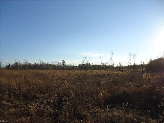 6.9AC Colonial Trl W, Surry County, VA 23881 (#10358220) :: Atkinson Realty