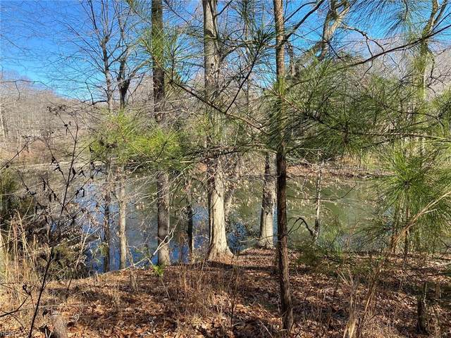 109 Dancy Pl, James City County, VA 23185 (MLS #10360746) :: AtCoastal Realty