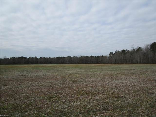 146 Ac Desert Rd, Suffolk, VA 23434 (#10361092) :: Abbitt Realty Co.