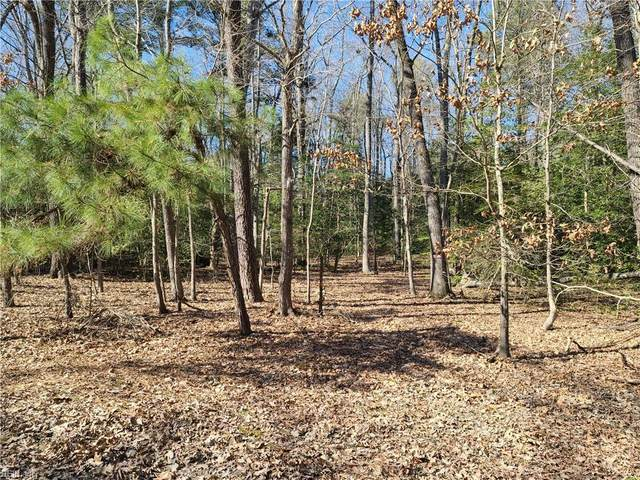 3.27AC Pinewood Rd, Charles City County, VA 23185 (#10365420) :: The Bell Tower Real Estate Team