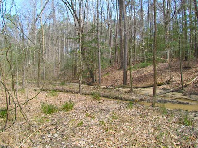 11 Ac Oak Tree Ln, Isle of Wight County, VA 23430 (#10366366) :: Abbitt Realty Co.