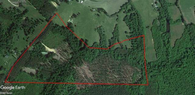 68 Ac Bull Creek Rd, Halifax County, VA 24577 (#10366590) :: Berkshire Hathaway HomeServices Towne Realty