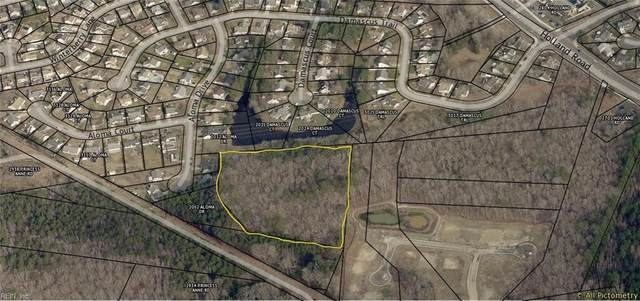 5.7ac Bluegrass Ln, Virginia Beach, VA 23453 (#10367003) :: Berkshire Hathaway HomeServices Towne Realty