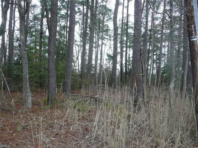 Lot 87 Holly Trl, Gloucester County, VA 23061 (#10370533) :: The Bell Tower Real Estate Team