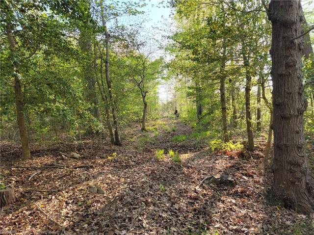 8.36AC Quaker Dr, Suffolk, VA 23437 (#10371791) :: Momentum Real Estate