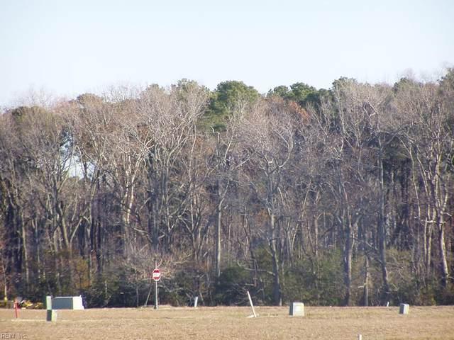 411 Captain Orris Browne, Northampton County, VA 23310 (#10373425) :: Avalon Real Estate