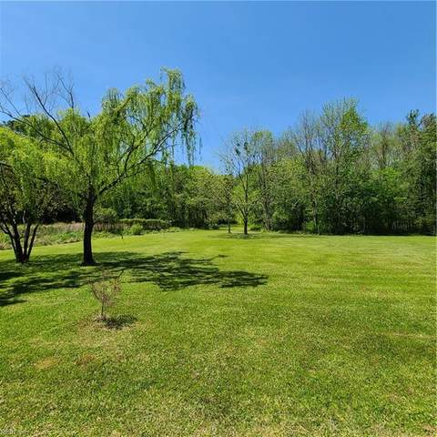 Lot 1 Buskey Rd, Chesapeake, VA 23322 (#10374190) :: Encompass Real Estate Solutions