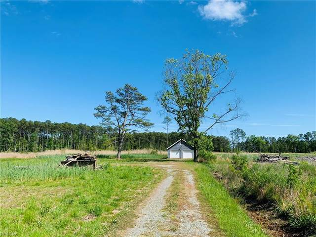 362 Whites Creek Ln, Mathews County, VA 23045 (#10376219) :: Team L'Hoste Real Estate