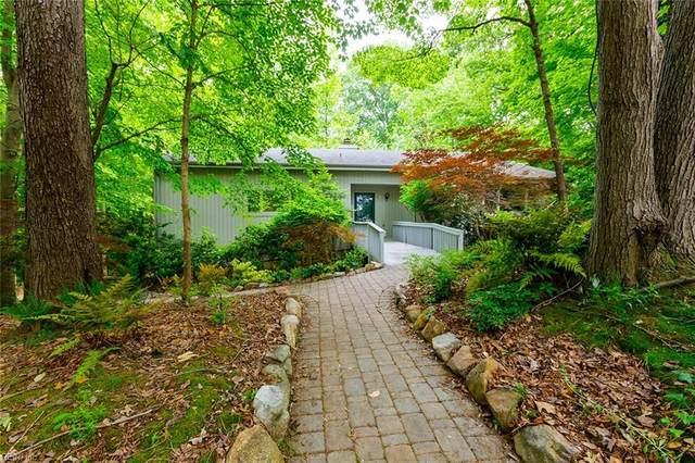 21 Walnut Hills Cir, Williamsburg, VA 23185 (#10376394) :: Rocket Real Estate