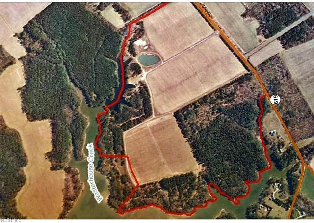 207ac Holly  Brook Farm (28-A-12), Northampton County, VA 23347 (#10383627) :: Verian Realty