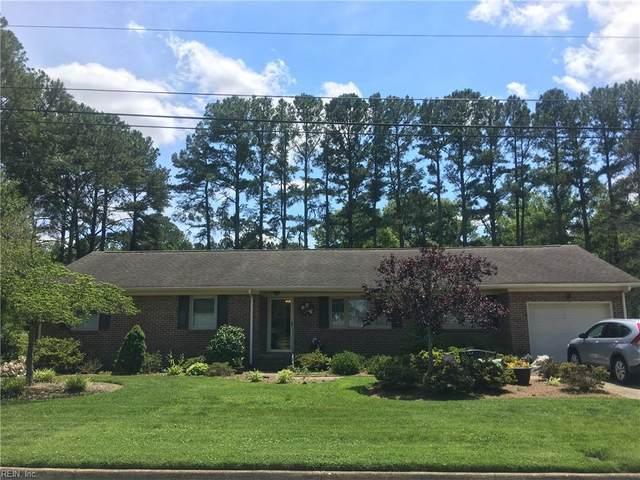 513 Greenway Dr, Chesapeake, VA 23322 (#10383857) :: The Kris Weaver Real Estate Team