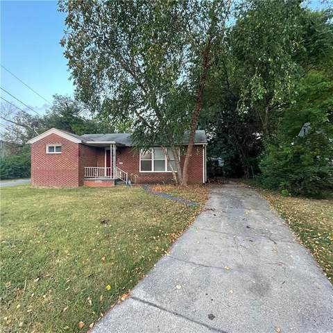6929 Minnie Ave, Norfolk, VA 23513 (#10391227) :: Atkinson Realty