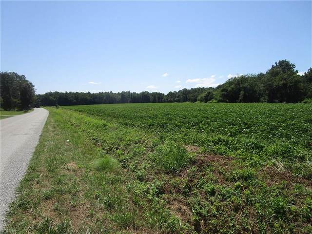 11356 Old Suffolk Rd, Isle of Wight County, VA 23487 (#10391332) :: RE/MAX Central Realty