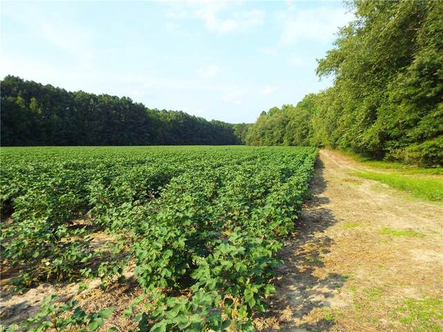 37 Ac Moores Ferry Rd, Emporia, VA 23847 (#10391714) :: Judy Reed Realty