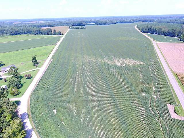 76 Ac Raynor Rd, Isle of Wight County, VA 23430 (#10393303) :: Rocket Real Estate
